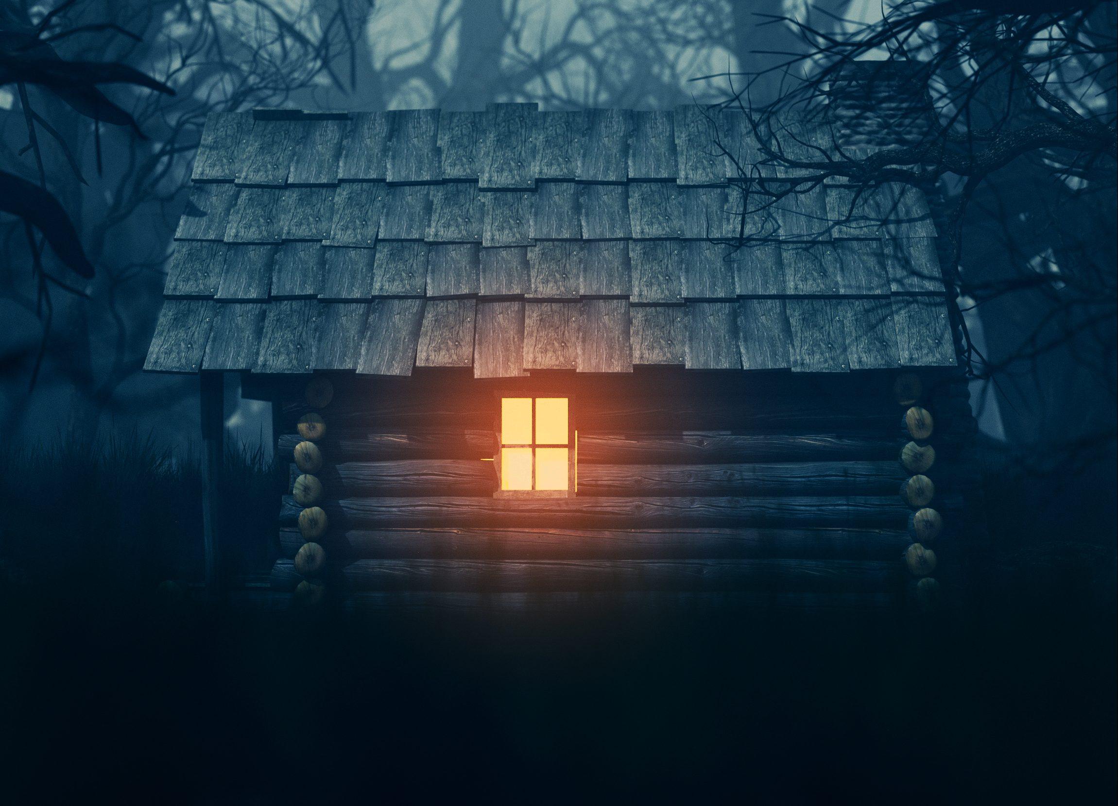 maison en bois en forêt la nuit